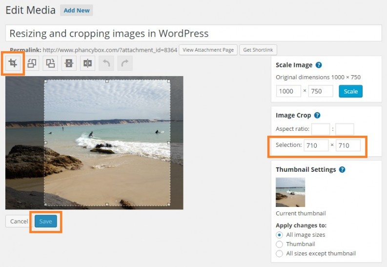 Crop your image in WordPress - Phancybox New Zealand Digital Agency