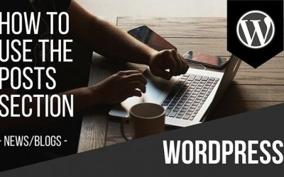 How to use the Posts Section in WordPress for News/Blogs